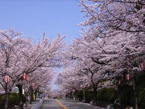 大阪-五月山公園