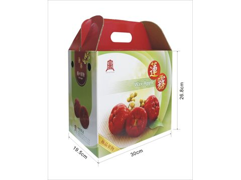 包装 包装设计 购物纸袋 纸袋 480_360